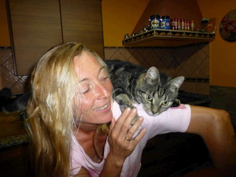 Ganzheitliche Homöopathie und Psychologie für Katzen