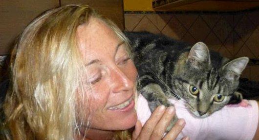 Ganzheitliche Katzenberatung, wenn die Katze sich aggressiv verhält